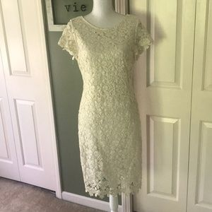 Amazing Lace Dress with Gold Shimmer